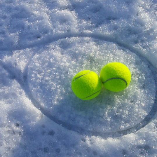 Bild_Winter